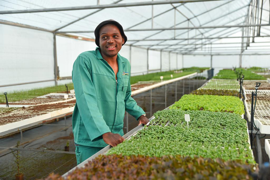 Evergrow Seedlings is set up to take the business to new heights in the midst of the pandemic and beyond